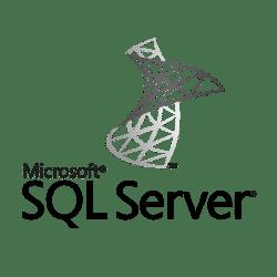 Dallas TX Microsoft SQL IT service experts.